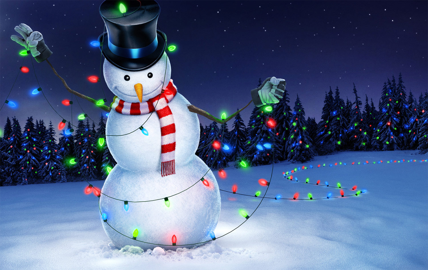 lowes_2013snowmanlights_1500